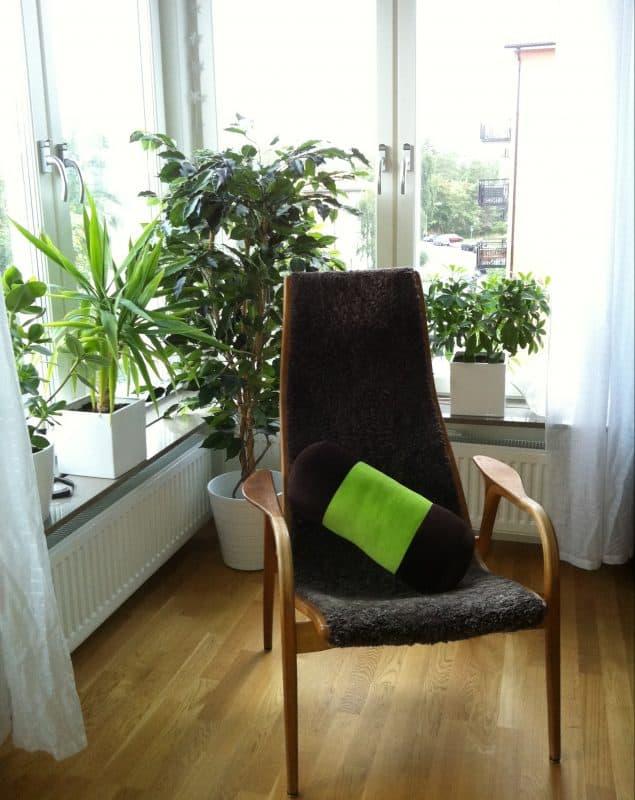 Läshörna vid fönster med gröna växter