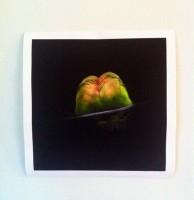 Foto av ett konsttryck, konst, fåglar