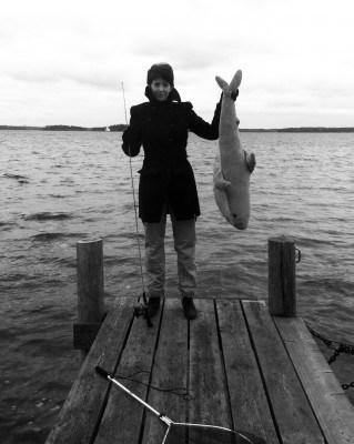 Arga Klara, fiska. Fick en haj på kroken.