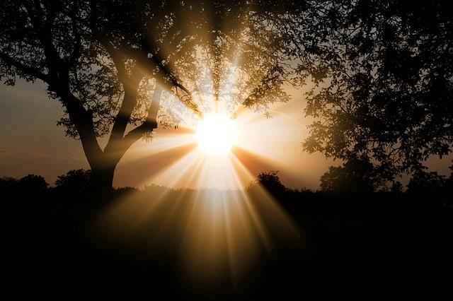 Sol och dis, väder