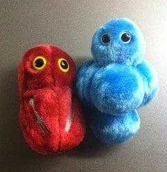 Giant microbes, en stafylokock och en köttätande bakterie. Julklappar.