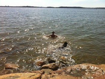 Arga Klara badar med hunden! Första doppet på nationaldagen, enligt tradition.