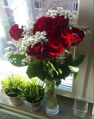 En bukett röda rosor, blommor