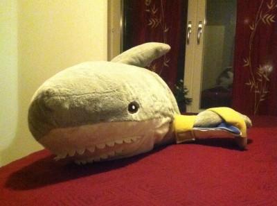 Gosedjur, haj, Haj med ortos för fenan. Roliga bilder på djur.