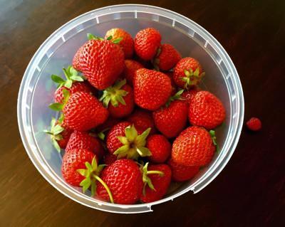 Nyplockade jordgubbar och ett smultron