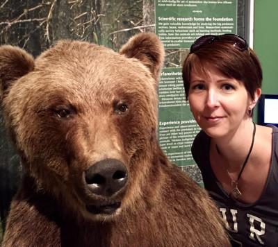 Björnar på Orsa Björnpark. Arga Klara