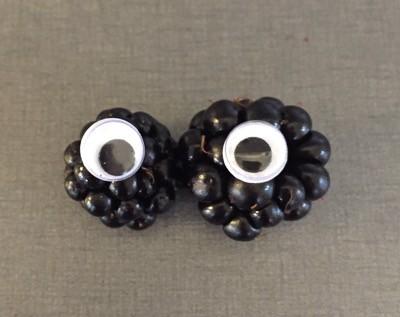 Björnbär med kulögon. Bearberry, blackberry, brumble, dewberry.