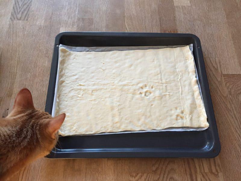 Katt och tassavtryck i deg, pizza. Det har öppnat ett kattcafé i Vasastan; Java Whiskers.