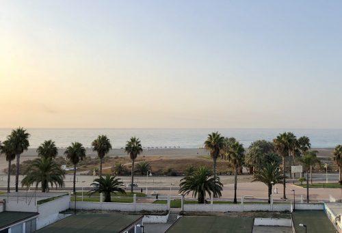 Utsikt över Medelhavet med palmer en tidig morgon i Spanien