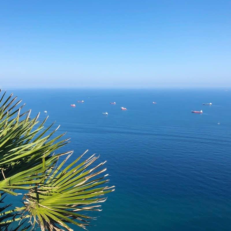Utsikt från Gibraltar. Hav, himmel, palm och skepp